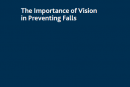 Vision and falls – information for professionals (English)