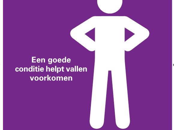 Fall Prevention Leaflet (Dutch)