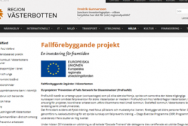 Fall prevention in older persons (Swedish website)