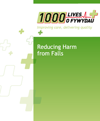 How to Guide: Reducing Harm from Falls (English)