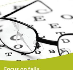 Falls in Focus (English)