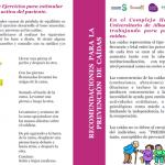 Información al paciente y cuidadores: Recomendaciones prevención de caídas (Complejo Hospitalario Universitario de Albacete, Spanish)