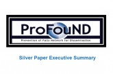 Silver Paper Executive Summary