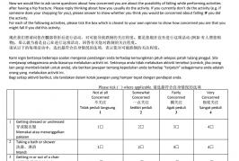 Falls Efficacy Scale-International Malay and Chinese (Mandarin) (FESI)